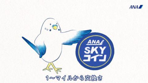 CM「ANA SKY コイン」